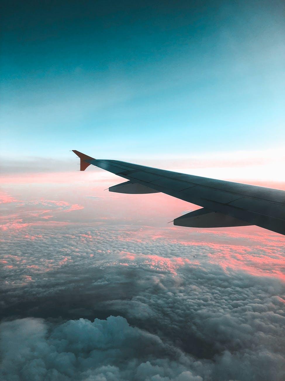 Flyvemaskine vinge